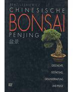 Chinesische Bonsai Penjing - Willi Benz, Paul Lesniewicz