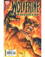 Wolverine Special: Firebreak One-Shot No. 1 - Kolins, Scott, Mike Carey