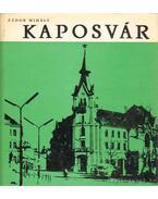 Kaposvár - Zádor Mihály