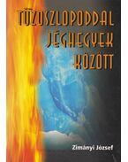 Tűzoszlopoddal jéghegyek között - Zimányi József