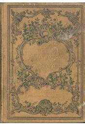 A jó társaság modora és illemszabályai - Egy Nagyvilági Hölgy - Régikönyvek