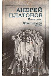 Munkagödör / Fiatalok tengere (orosz) - Andrej Platonov - Régikönyvek