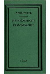 Metamorphosis Transylvaniae azaz Erdélynek változása (1736) - Apor Péter - Régikönyvek