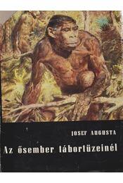 Az ősember tábortüzeinél - Augusta, Josef - Régikönyvek