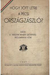 Hogy jött létre a Pécsi országzászló ? - Régikönyvek