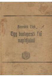 Egy budapesti fiú naplójából - Benedek Elek - Régikönyvek