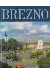 Brezno a okolie - Bosela, Lukás - Régikönyvek