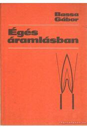 Égés áramlásban - Bassa Gábor - Régikönyvek