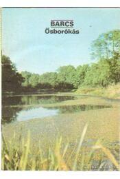 Barcs - Ősborókás - Temesi Ida - Régikönyvek