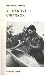 A teknővájó cigányok - Bencsik János - Régikönyvek