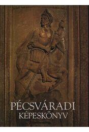 Pécsváradi képeskönyv - Gállos Orsolya - Régikönyvek
