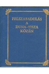 Felszabadulás a Duna-Tisza közén (mini) - Ablaka István, Sztrapák Ferenc - Régikönyvek