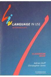 Language in use - Intermediate - Doff, Adrian, Jones, Christopher - Régikönyvek