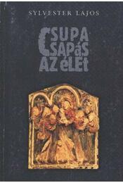 Csupa csapás az élet - Sylvester Lajos - Régikönyvek