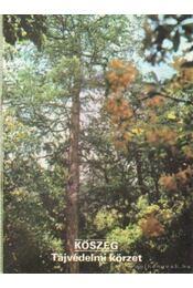 Kőszeg - Tájvédelmi körzet - Temesi Ida - Régikönyvek