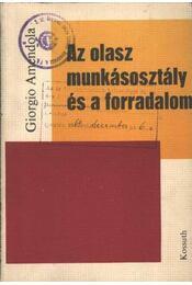 Az olasz munkásosztály és a forradalom - Amendola, Giorgio - Régikönyvek