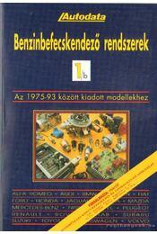 Benzinbefecskendező rendszerek 1/b - Régikönyvek