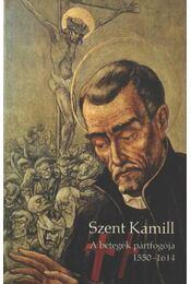 Szent Kamill - Osc, Johannes Hugo Balsliemke - Régikönyvek