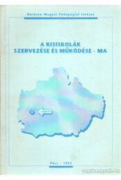 A kisiskolák szervezése és működése - ma - Dr. Sántha Attiláné (szerk.) - Régikönyvek
