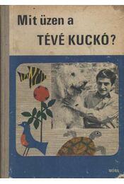 Mit üzen a Tévé Kuckó? - Bálint Ágnes - Régikönyvek