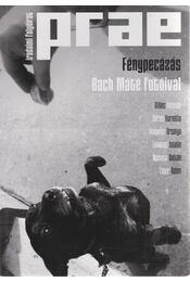 Prae 2014/2. - Fénypecázás Bach Máté fotóival - Balogh Endre - Régikönyvek