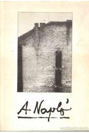 A napló 1977-1982 - Barna Imre, Várady Szabolcs, Kenedi János, Sulyok Imre - Régikönyvek