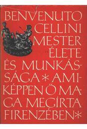Benvenuto Cellini mester élete - Régikönyvek