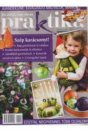 Praktika 2013/12. december - Boda Ildikó (főszerk.) - Régikönyvek