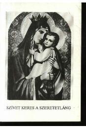 Szívet keres a szeretetláng a Fájdalmas Szűzanyával - Ipolyvölgyi Németh J. Krizosztom - Régikönyvek