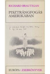 Pisztrángfogás Amerikában / Egy déli tábornok az amerikai polgárháborúban - Brautigan, Richard - Régikönyvek