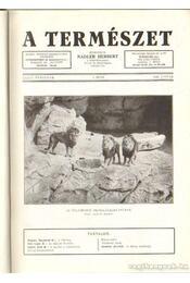 A természet 1940. XXXVI. évf. (teljes) - Nadler Herbert - Régikönyvek