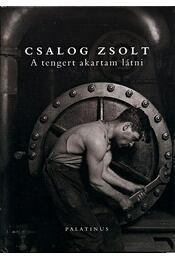 A TENGERT AKARTAM LÁTNI - ÜKH 2010 - Csalog Zsolt - Régikönyvek