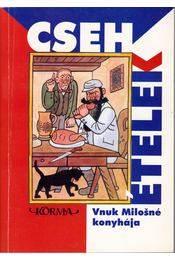 Cseh ételek - Bohemia szakácskönyv - Vnuk Milosné, Molnár Éva - Régikönyvek