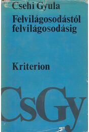 Felvilágosodástól felvilágosodásig - Csehi Gyula - Régikönyvek