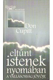 Eltűnt istenek nyomában - Cupitt, Don - Régikönyvek