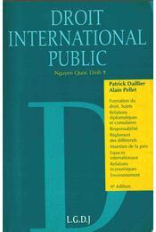 Droit International Public - Daillier, Patrick, Pellet, Alain, Dinh, Nguyen Quoc - Régikönyvek