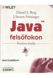 Java felsőfokon - Daniel J. Berg, J. Steven Fritzinger - Régikönyvek