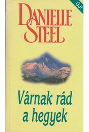 Várnak rád a hegyek - Danielle Steel - Régikönyvek