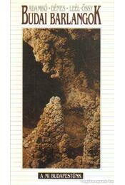 Budai barlangok - Dénes György, Adamkó Péter, Leél-Őssy Szabolcs - Régikönyvek