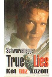 True Lies: Két tűz között - Dewey Gram, Duane Dell'Amico - Régikönyvek