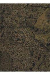 Tinódi Sebestyén (hiányos) - Dézsi Lajos - Régikönyvek