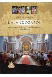 Élő Egyház - Kalandozások az Esztergom-Budapesti Egyházmegyében a Hit Évében - Domokos György - Régikönyvek