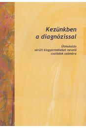 Kezünkben a diagnózissal - dr. Borbély Sjoukje (szerk.) - Régikönyvek