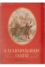 A szabadságharc csatái - Elek István - Régikönyvek