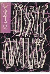 Összeomlás - Émile Zola - Régikönyvek