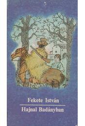 Hajnal Badányban - Fekete István - Régikönyvek