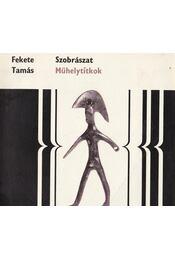 Szobrászat - Fekete Tamás - Régikönyvek