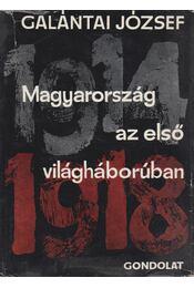 Magyarország az első világháborúban (dedikált) - Galántai József - Régikönyvek