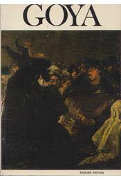 Goya - Régikönyvek