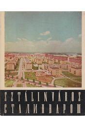 Sztálinváros - Halász Zoltán - Régikönyvek